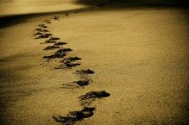 sand-768783_640-aberwehe